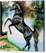 Dream Horse Series 3015 Acrylic Print