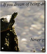 Dream Of Being An Eagle Acrylic Print