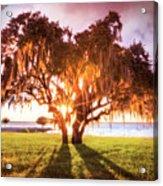 Dreaming At Sunrise Acrylic Print