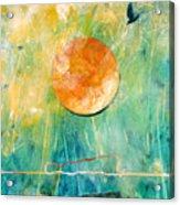 Dreaming Dreams Acrylic Print
