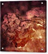 Dreaming Hortensia Acrylic Print