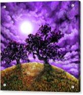 Dreaming Of Oak Trees Acrylic Print