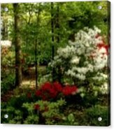 Dreaming Of Spring Acrylic Print by Sandy Keeton