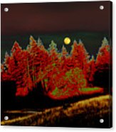 Dreaming Tree Moon Acrylic Print
