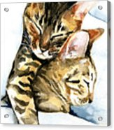 Dreamland - Bengal And Savannah Cat Painting Acrylic Print