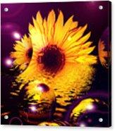 Dreams 4 - Sunflower Acrylic Print
