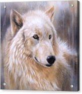 Dreamscape - Wolf II Acrylic Print