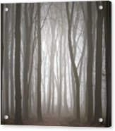 Dreamscape Forest Acrylic Print