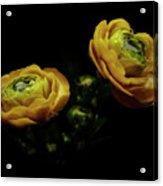 Dreamy #899 Acrylic Print