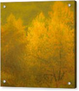 Dreamy Autumn Acrylic Print