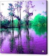 Dreamy Bayou Sorrel Acrylic Print