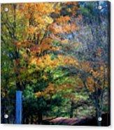 Dreamy Fall Scene Acrylic Print