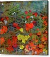 Dreamy Flowers Acrylic Print