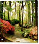 Dreamy Path Acrylic Print