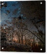 Dreamy Reflections Acrylic Print