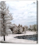 Dreamy Surreal Infrared Pond Landscape Nature Scene  Acrylic Print