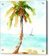 Dreamy Tropical Beach Palm Acrylic Print