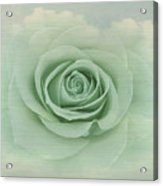 Dreamy Vintage Floating Rose Acrylic Print