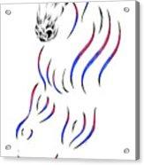 Dressage Horse Dancer Print Acrylic Print