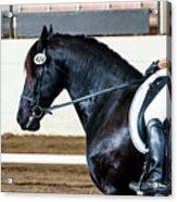 Dressage Horse Show Acrylic Print