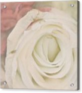 Dressed In White Satin Acrylic Print