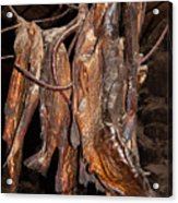 Dried Fish Acrylic Print