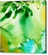 Drifting Seaweed Acrylic Print