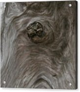 Driftwood Break Acrylic Print