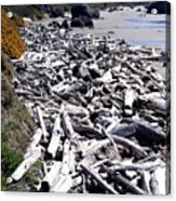 Driftwood By The Ton Acrylic Print