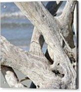 Driftwood Detail Acrylic Print