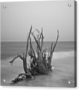 Driftwood Infrared 60 Acrylic Print
