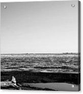 Driftwood On Arctic Beach Balck And White Acrylic Print