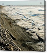 Driftwood On The Frozen Arctic Coast Acrylic Print