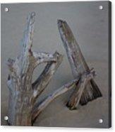 Driftwood Reaches Acrylic Print