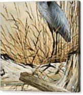 Driftwood Splendor Acrylic Print