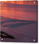 Driftwood Sundown Acrylic Print