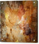 Drinking Shadows From A Brown Paper Bag And Stumbling Over The Curb Into Night Acrylic Print