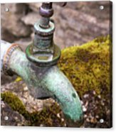 Dripping Tap On A Stone Trough Acrylic Print