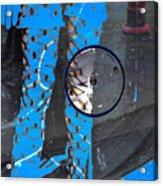 Dripping Wet Acrylic Print