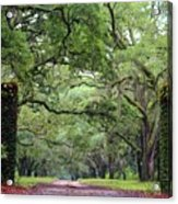 Driveway To The Past Acrylic Print