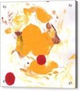 Dromedar Acrylic Print