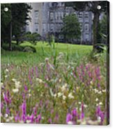 Dromoland Castle  Ireland Acrylic Print by Pierre Leclerc Photography