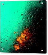 Droplets Iv Acrylic Print