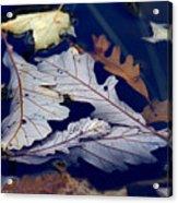 Drowning In Indigo Acrylic Print