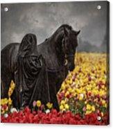 Druids In The Fields Acrylic Print