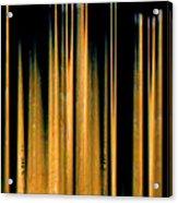 Drumstick Acrylic Print