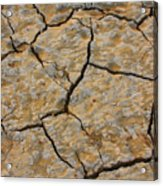 Dry Cracked Lake Bed Acrylic Print