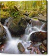 Dry Creek II Acrylic Print