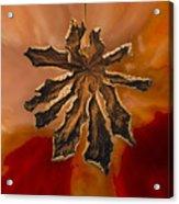 Dry Leaf Collection Digital 1 Acrylic Print