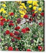 Dubai Flowers Acrylic Print